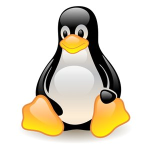 Tux The Linux Penguin